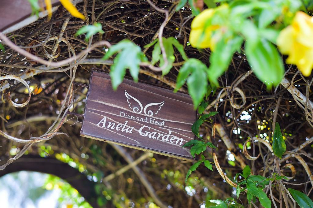 ハワイ ダイヤモンドヘッド・アネラ・ガーデン・チャペル10