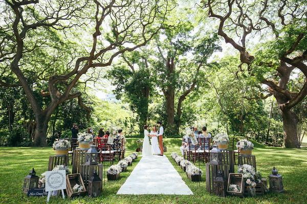 モアナルアガーデン,この木なんの木,ハワイウェディング,ハワイ婚,プランナー,アパナミサ,ハワイ,ハワイ結婚式