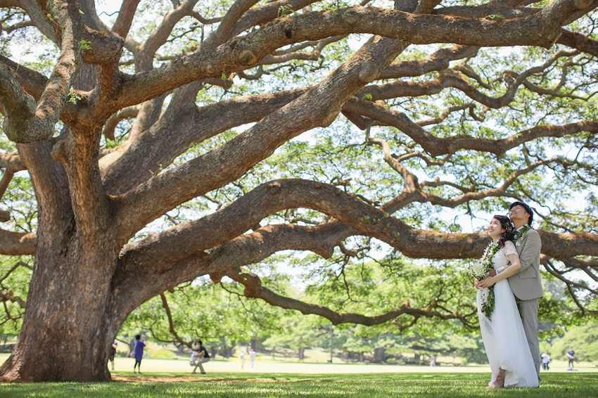 この木なんの木気になる木,モアナルアガーデン挙式,ハワイウェディング,ロケフォト,ハワイ結婚式,リノハワイ,フォトだけ